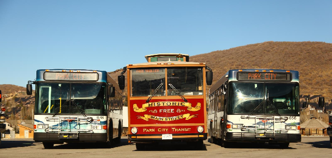 Buses With Trolley